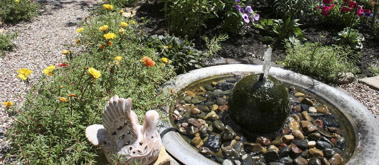 Фото фонтанов в огороде